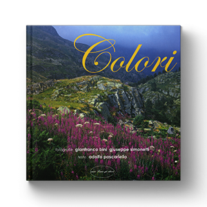 Colori – Colours – Couleurs